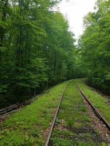Railbiking_Jun19